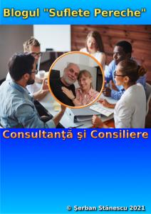 Consultanţă şi Consiliere