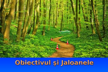 Obiectivul şi Jaloanele